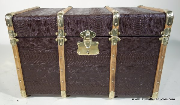 R1787 Exotic trunk